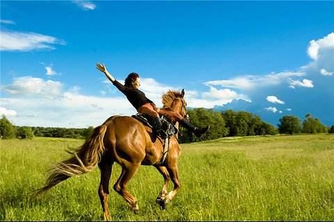 让你策马奔腾的梦想成为现实 – 纳奈莫最新房源推荐